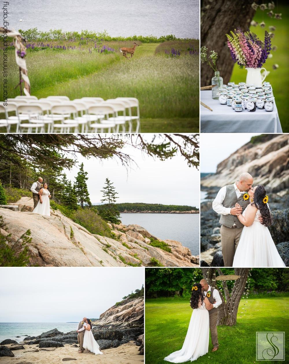 Mount Desert Island Maine Wedding