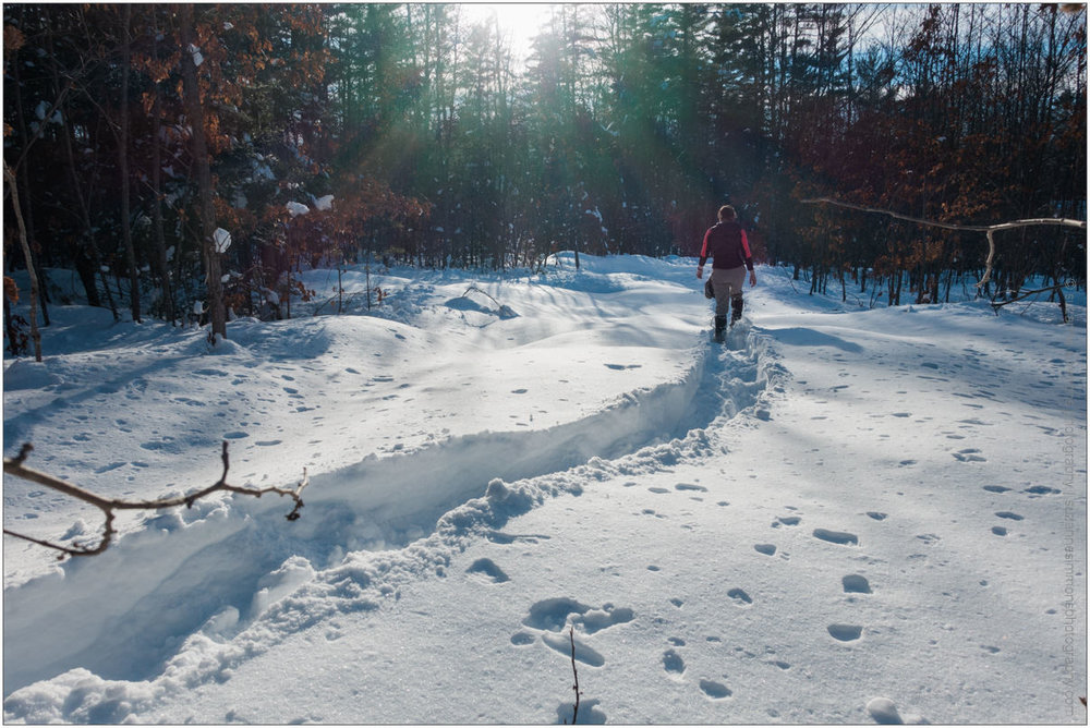 Snowshoeing with photographer in Standish Maine