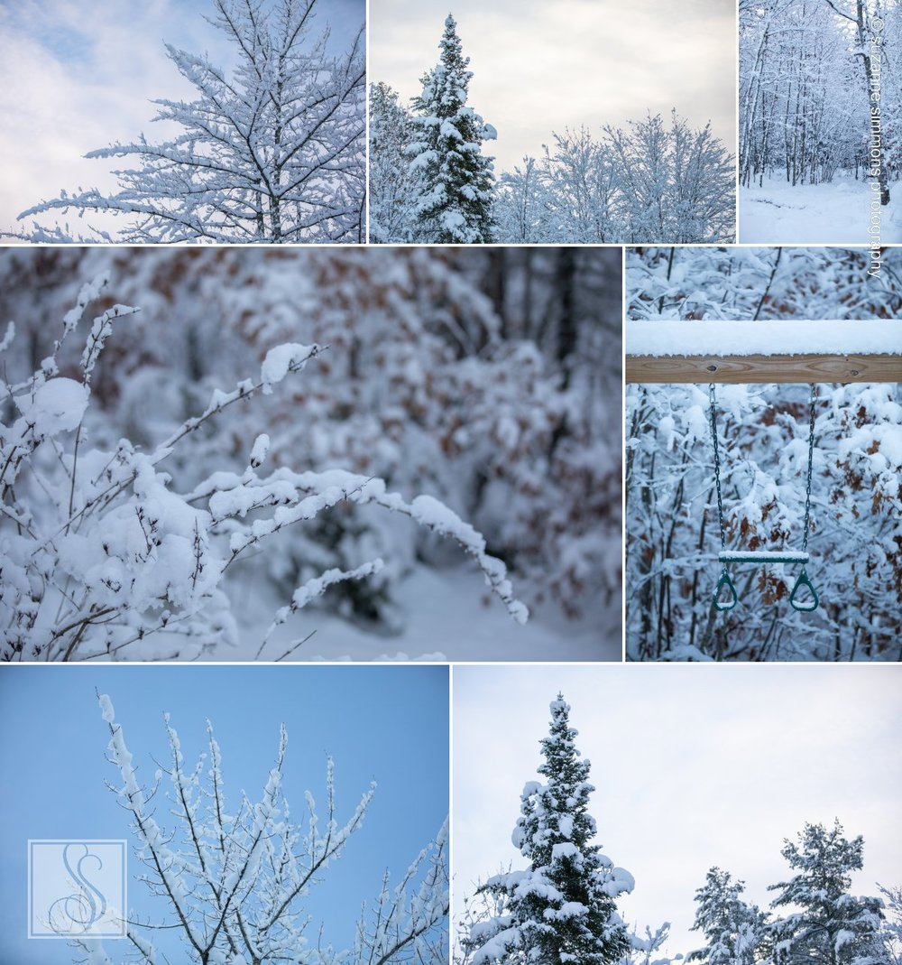 Winter in Standish Maine