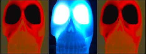 skullx3_14.png