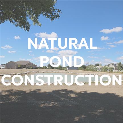 naturalpond.png