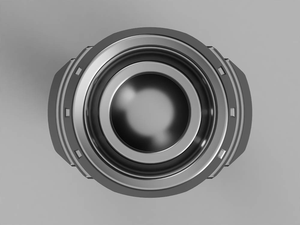 rook-ring-top.png