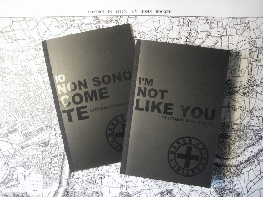 Io non sono come te / I'm not like you, 2011