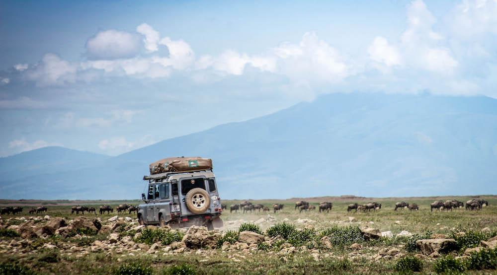 Driving through the Serengeti.jpg