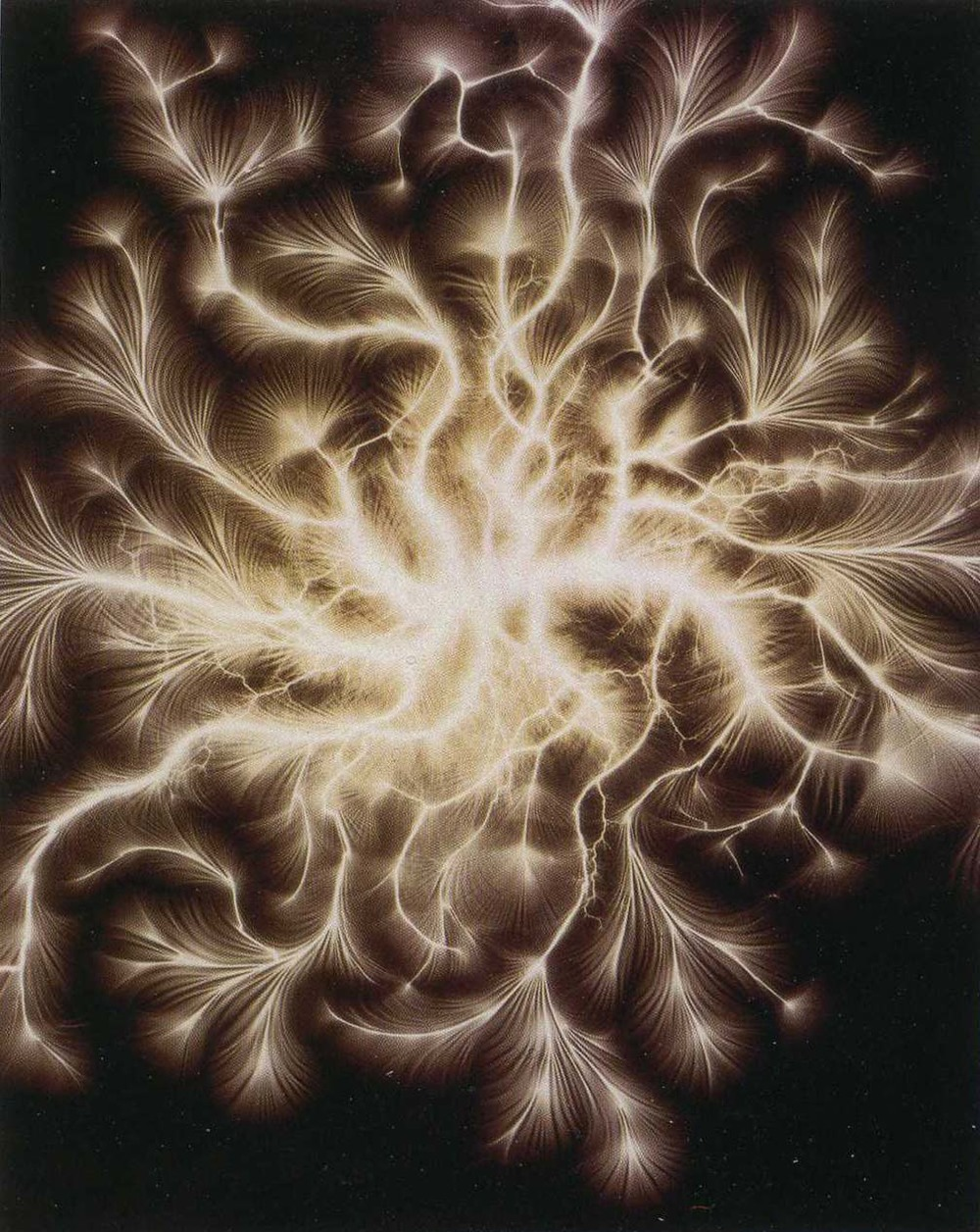 "design-is-fine :      Etienne Leopold Trouvelot. Direct electric spark obtained with a Ruhmkorff coil or Wimshurst machine, also known as a ""Trouvelot Figure."", 1888.   © Musée des arts et métiers, Paris      Trouvelot generated his images without a camera, directly exposing photosensitive plates to brief bursts of electrical energy. The resulting snapshots reveal patterns that resemble tree branches, rivers, vascular systems, coral, neurons, city maps, mountain ranges, microchips, mycorrhizal networks, galaxies, flow charts, family trees and feathers—basically everything in the universe whose structure is determined by growth, movement or the transfer of energy. Source  Emily Pothast"