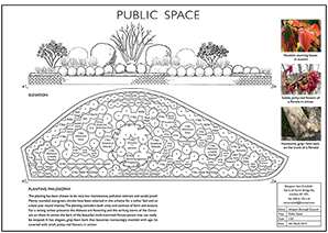 An example of a planting plan with a section elevation