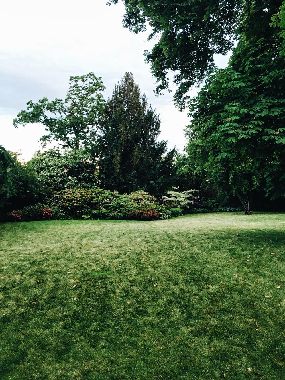 K10 Backyard