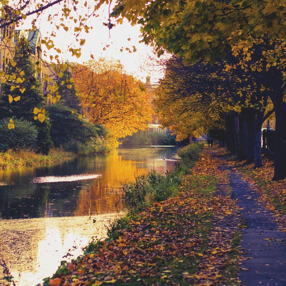 Fall in Ireland.