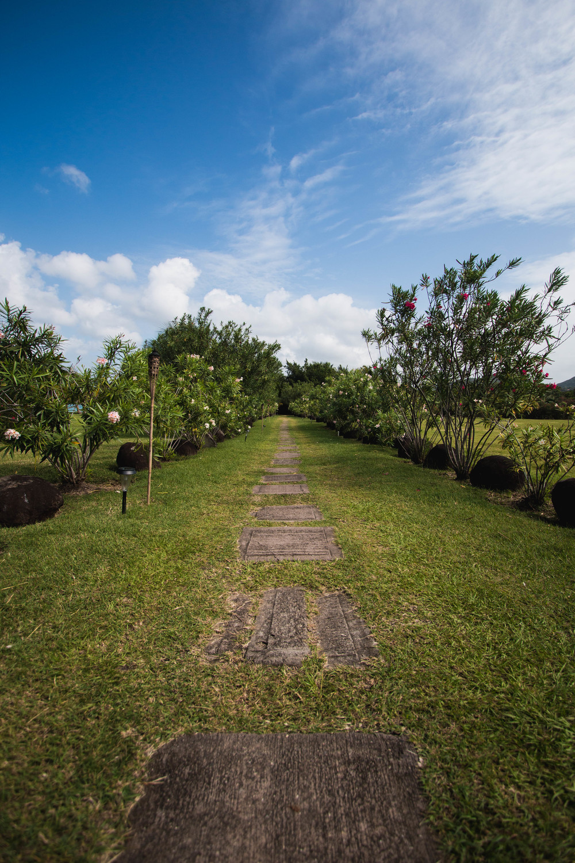 Garden Walk - Grand Anse, Grenada 08/01/2016