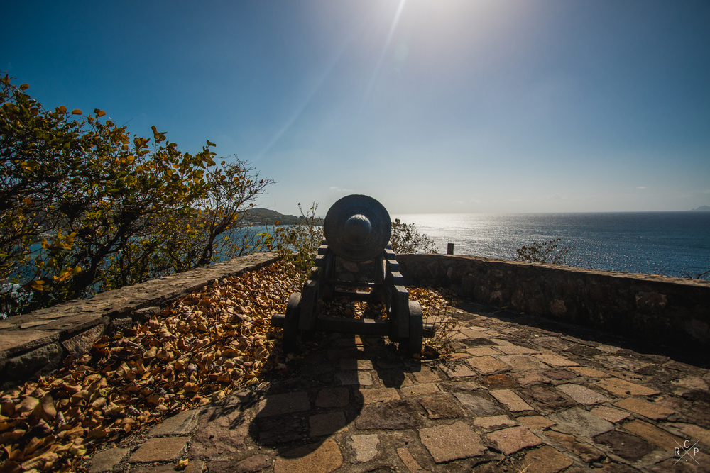 South Facing Cannon - Fort Duvernette, St. Vincent & The Grenadines 09/02/2016