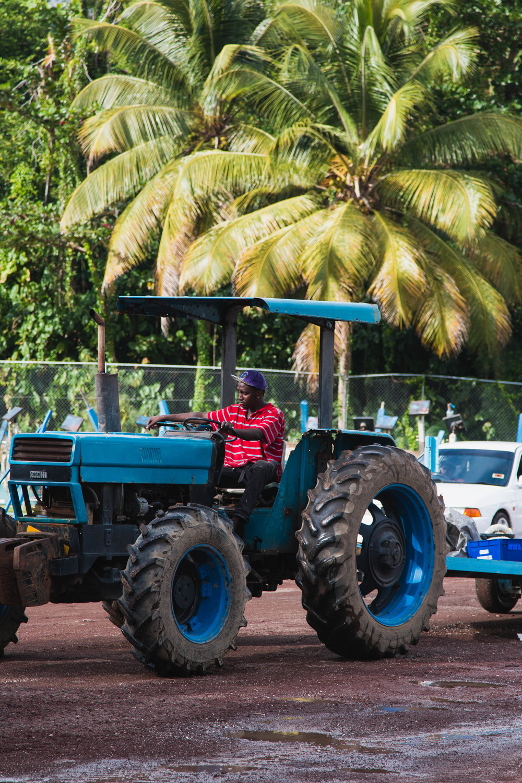 Tractor Man - St. Davids, Grenada 09/01/2016