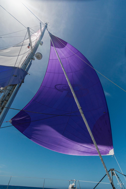 Cruising Chute 1 - Caribbean Sea 07/03/2016
