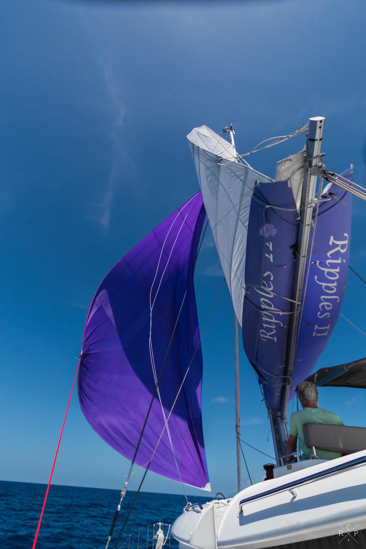 Cruising Chute 2 - Caribbean Sea 07/03/2016