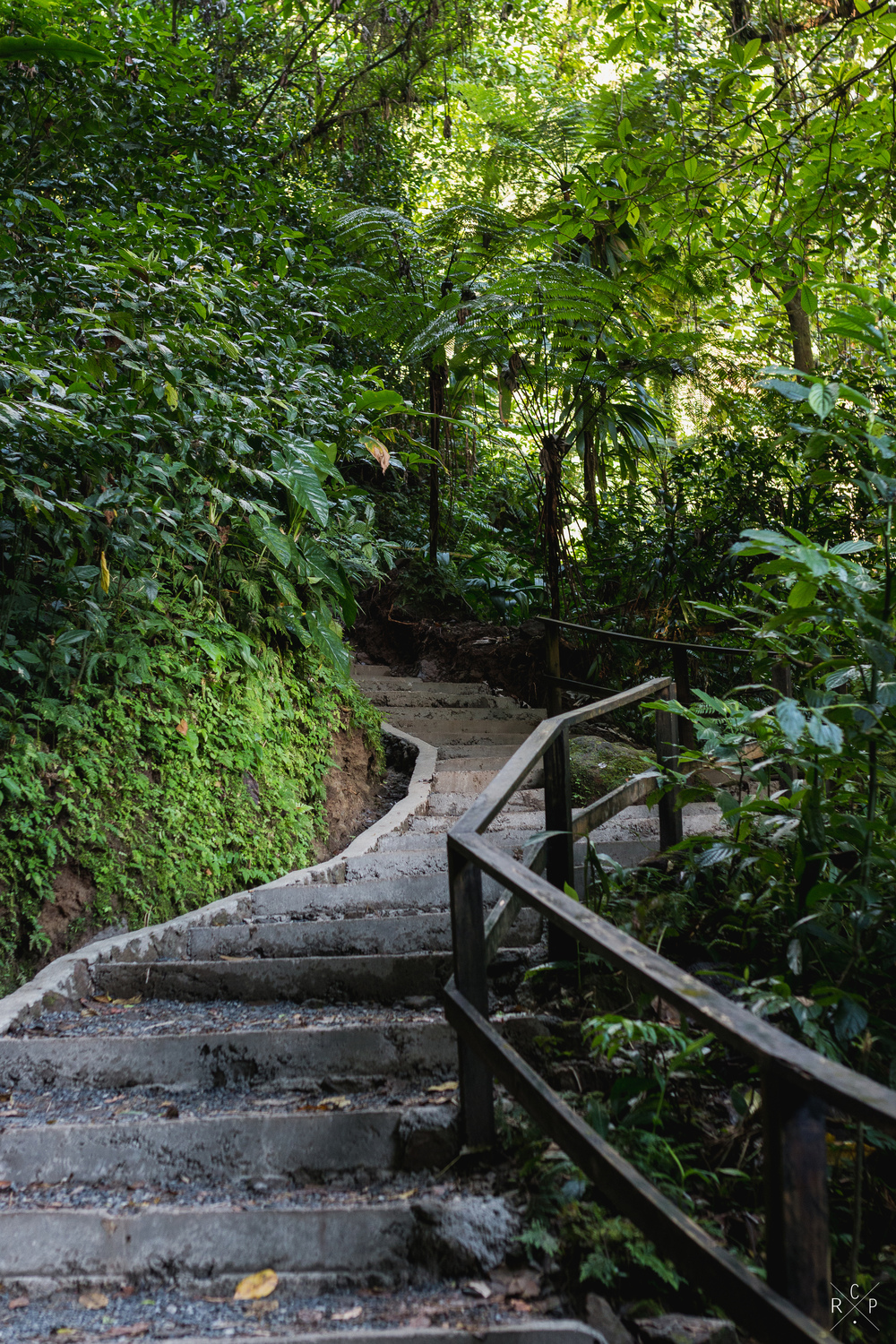 Stairway To Adventure 1 - Trafalgar Falls, Dominica 07/03/2016