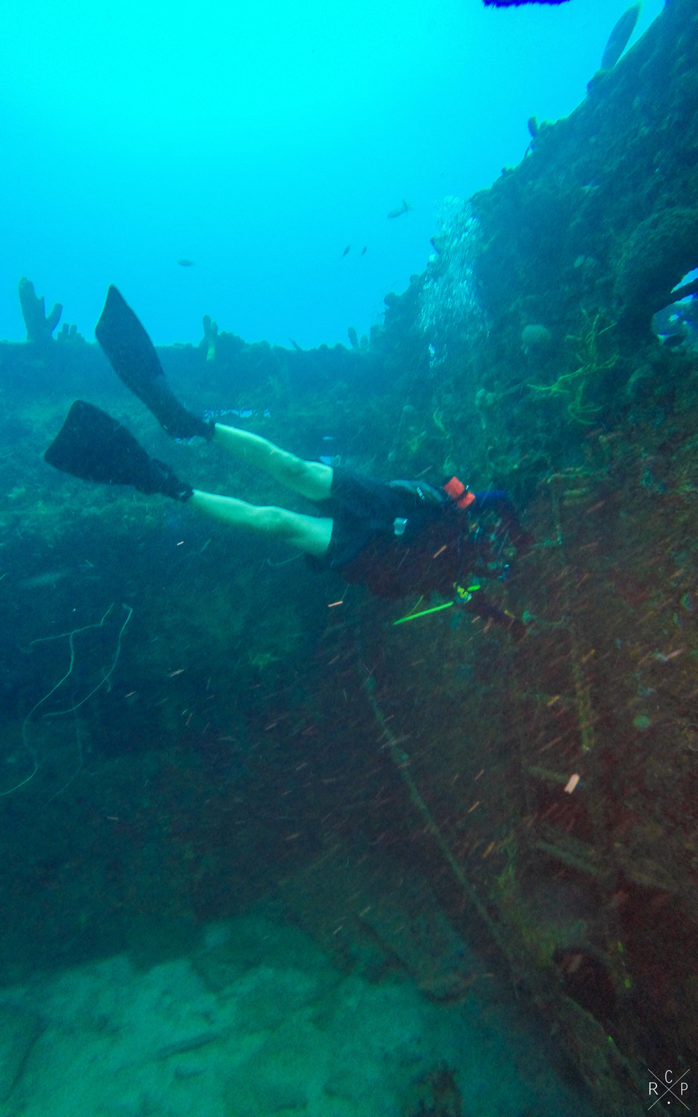 Human Flag - Fran Jack Wreck, Jacque Cousteau Underwater Reserve, Guadeloupe 10/04/2016