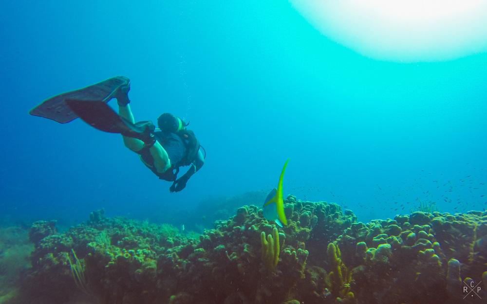 Friends - La Piscine, Jacque Cousteau Underwater Reserve, Guadeloupe 11/04/2016