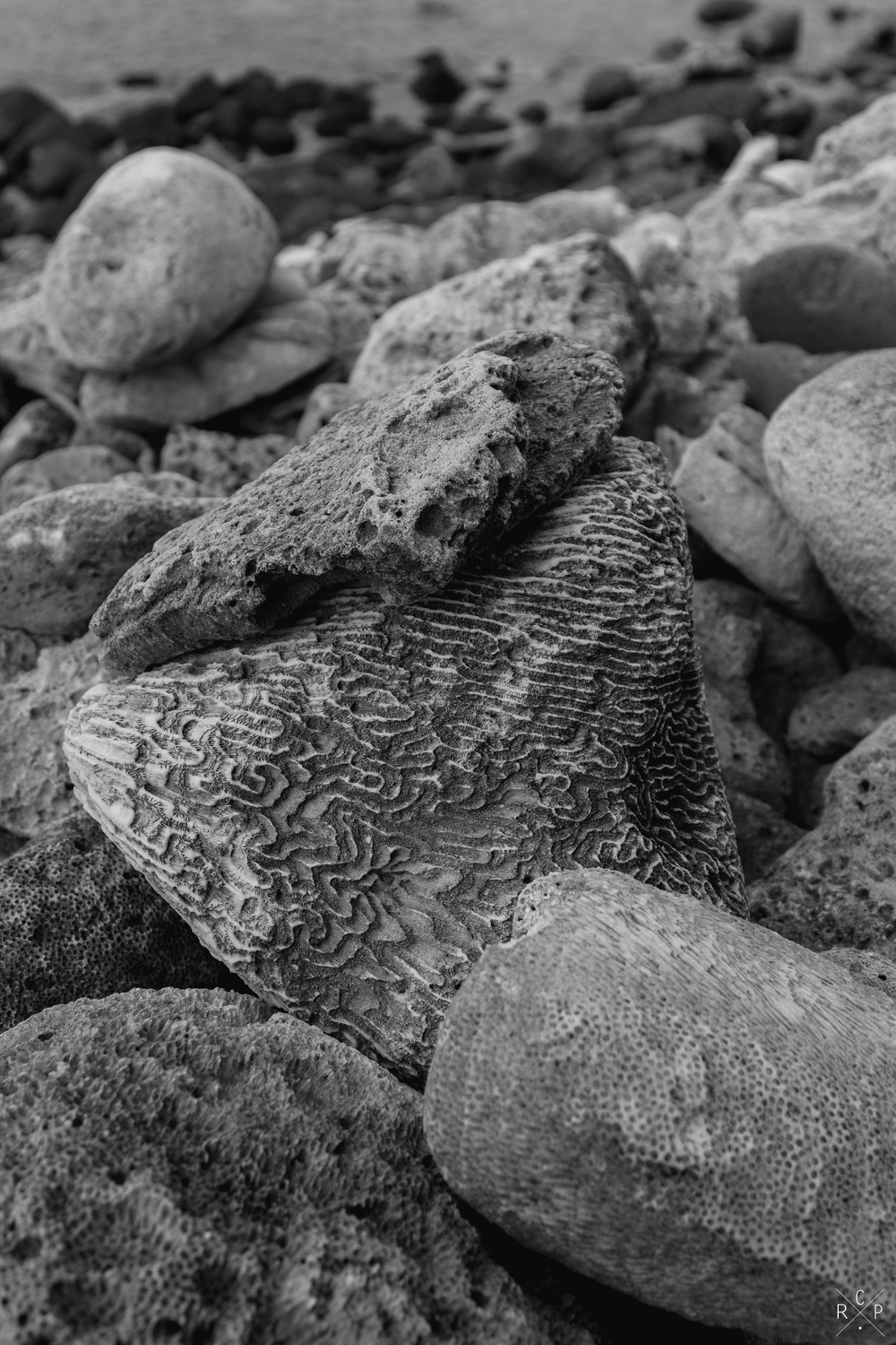 Weathered Rock 1 - Pigeon Island, Saint Lucia 29/03/2016