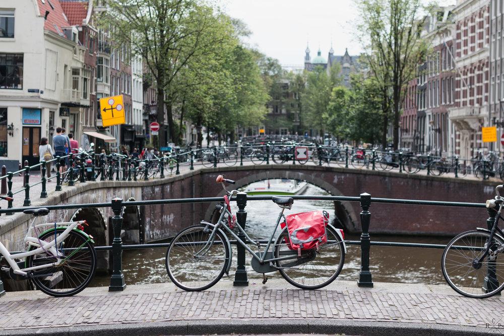 Dam Vibes - Amsterdam, Holland 17/06/2017