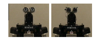 Figure 3. Eye gazing of robots with and without eyes (Farroni et al., 2005, p.131).