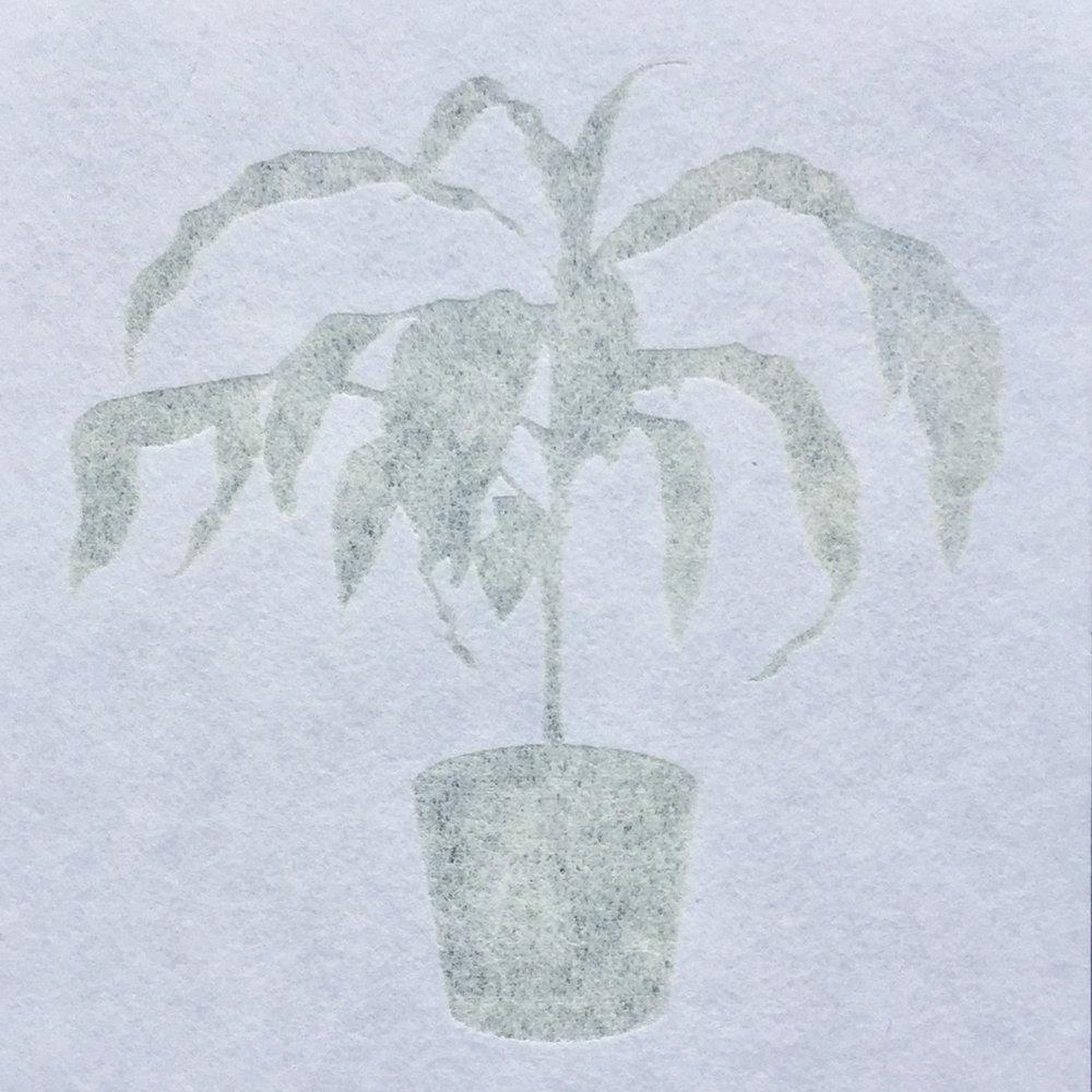 laser engraved paper (Masa)