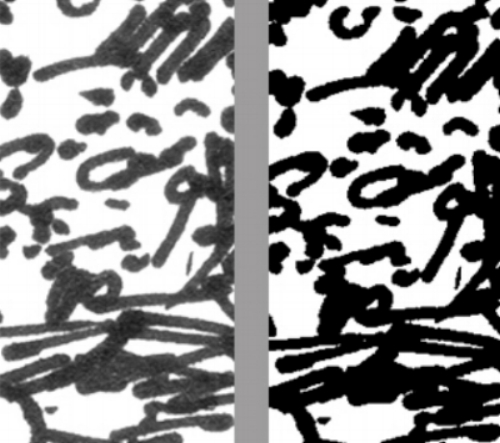 Scanned image (left). Image after adjusting Curves (right).