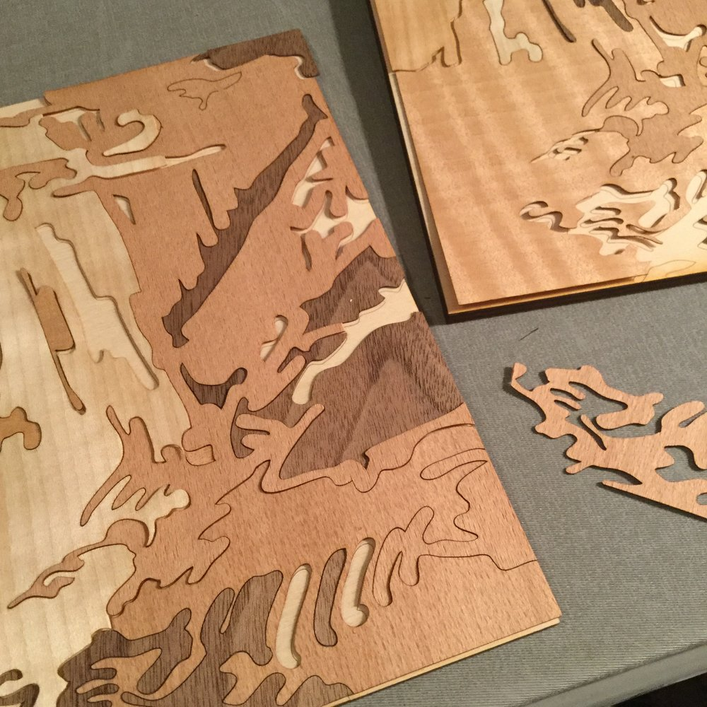 Sarah Pike   Laser cut marquetry