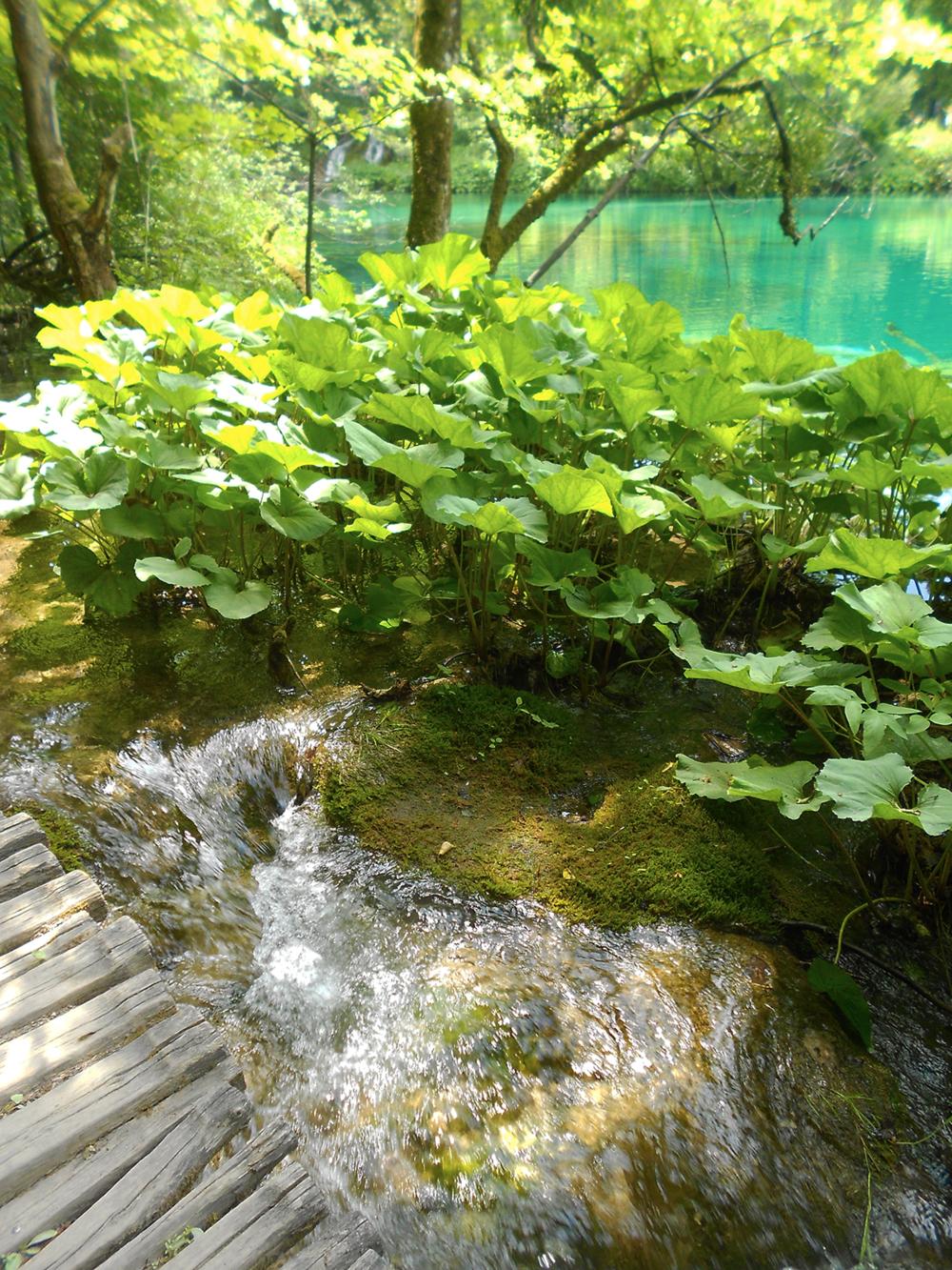 Plitvice Lakes National Parks Croatia walkway waterfall.png