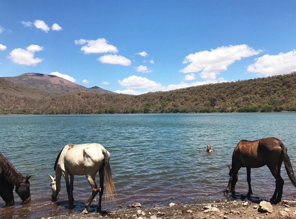 Sapphire & Elm Travel Co-founder, Stephanie swimming with wild horses in Nicaragua