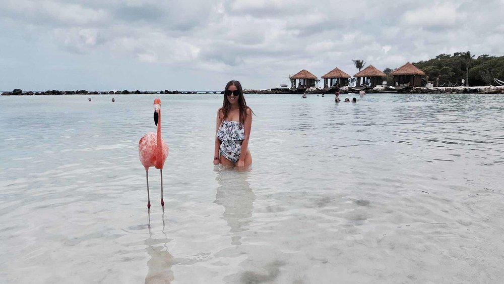 Flamingo Island Aruba .jpg
