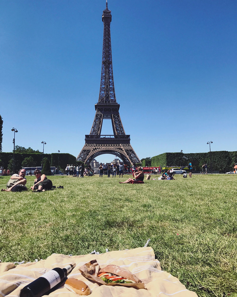 Paris-Picnic-Eiffel-Tower.jpg