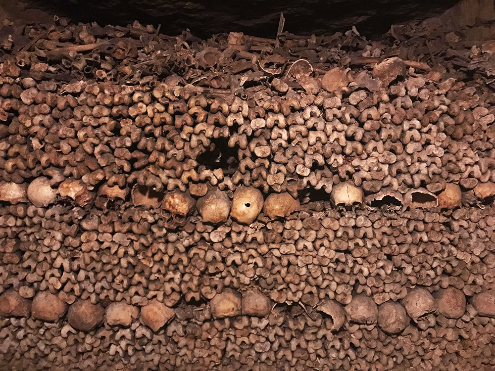 human skeletal remains in the Paris catacombs