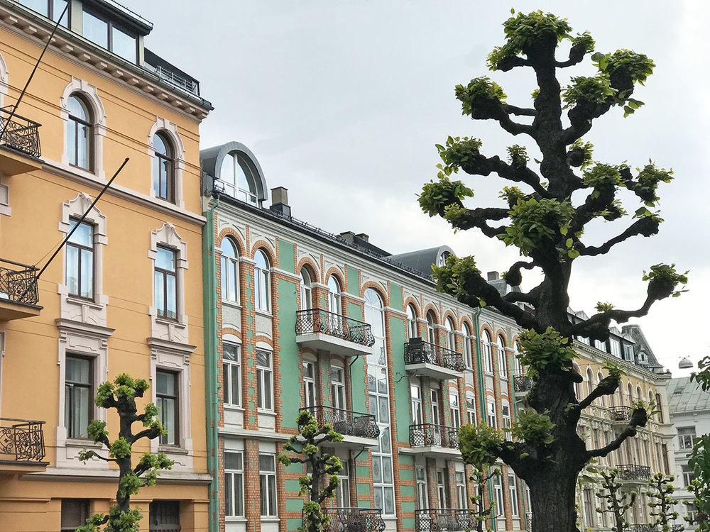 Oslo-homes-and-tree.jpg