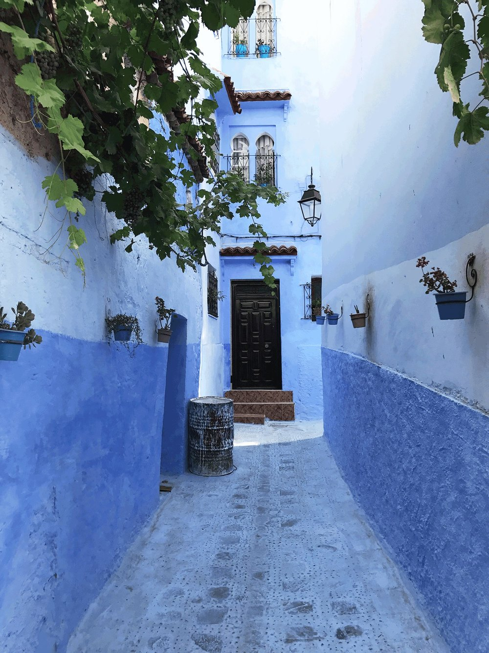 Chefchaouen | The Blue City Morocco