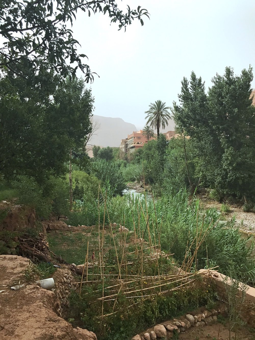 Hiking Morocco | Todra Gorge