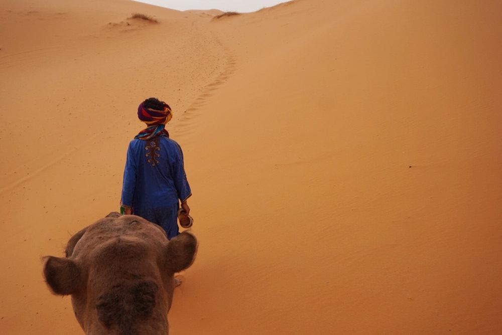 Camel trek into the Sahara Desert