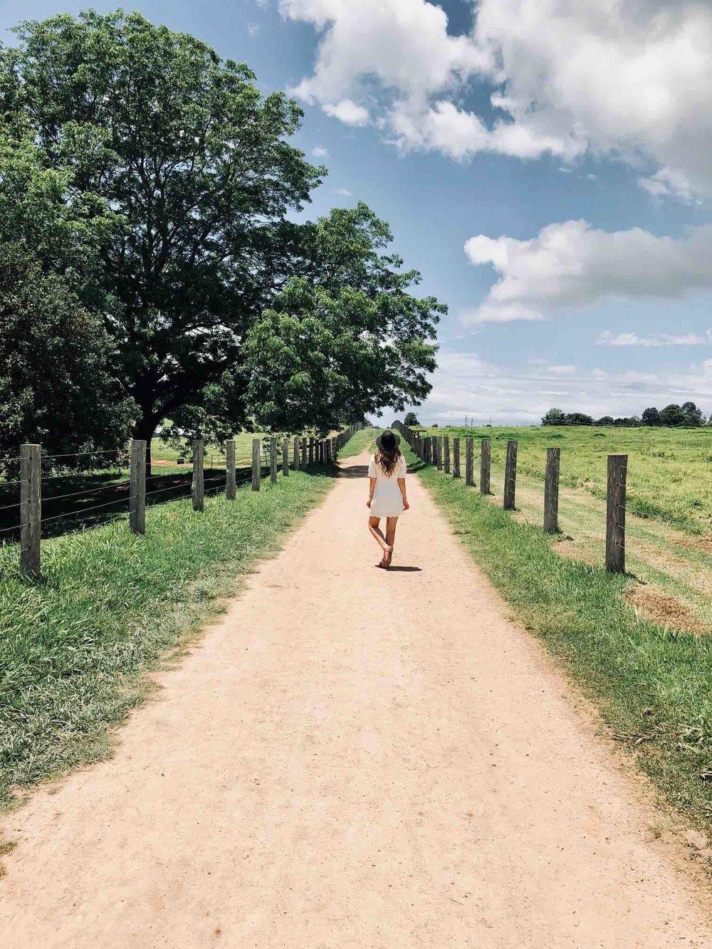 Walking the Farm Byron Bay .jpg