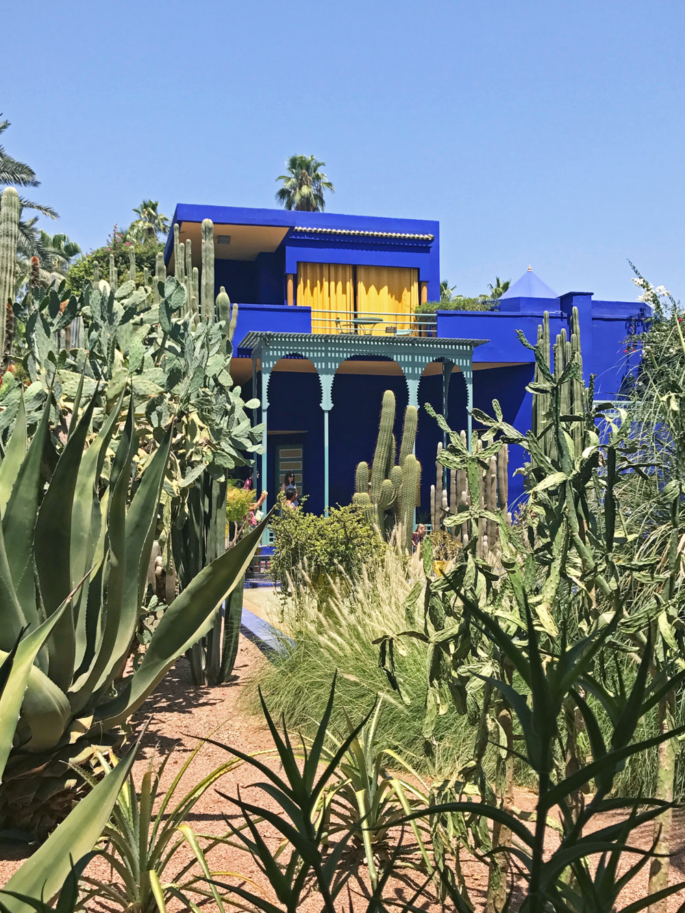 Garden Majorelle in Marrakesh Morocco | Photos of Morocco