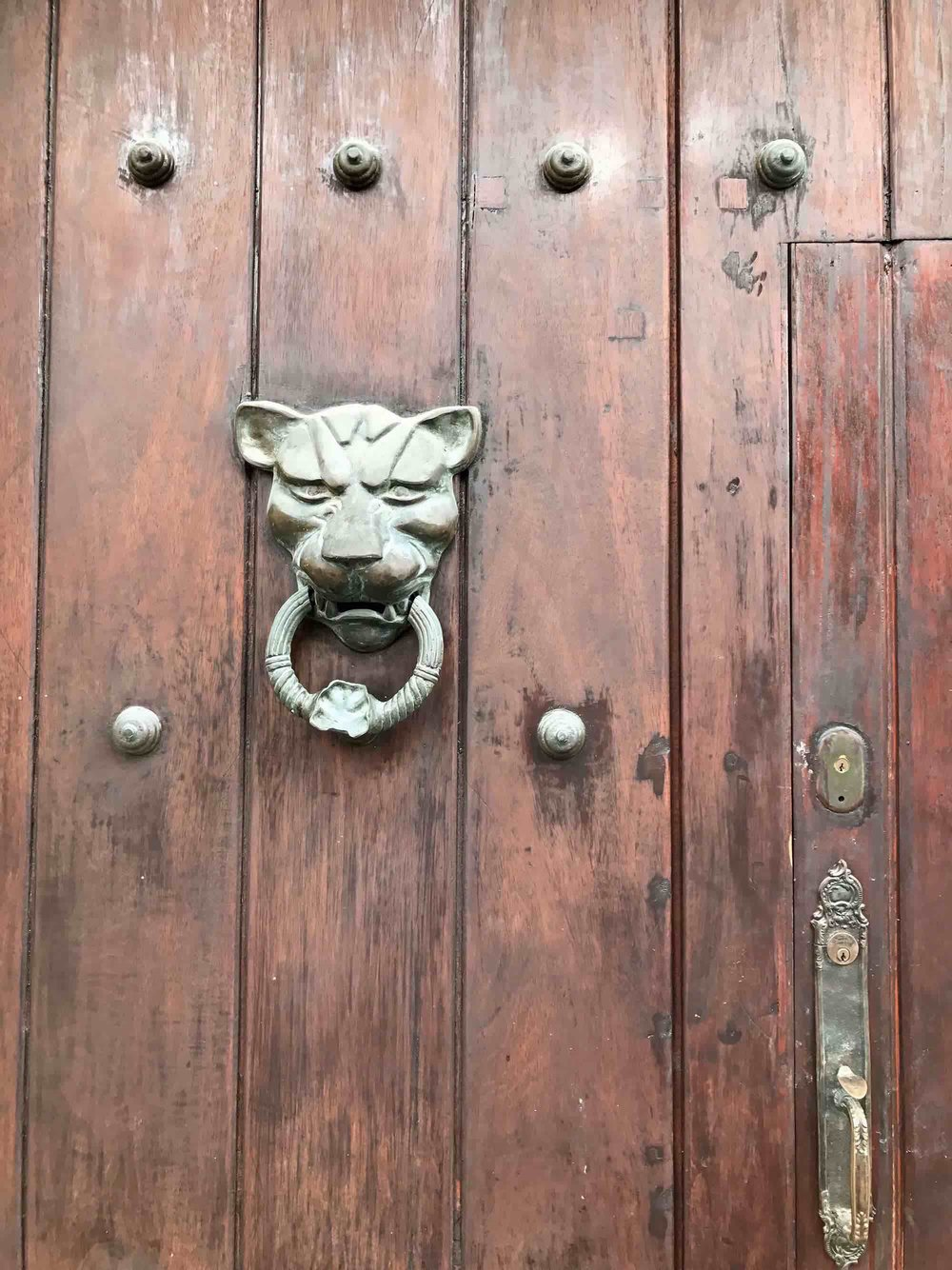Lion door knocker | Doors and Door Knockers of Cartagena, Colombia