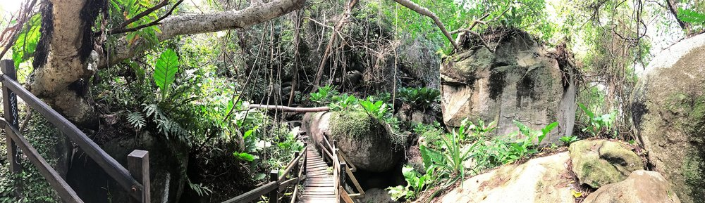 Tayrona-National-Park-Colombia-Indiana-Jones-jungle-pano.jpg