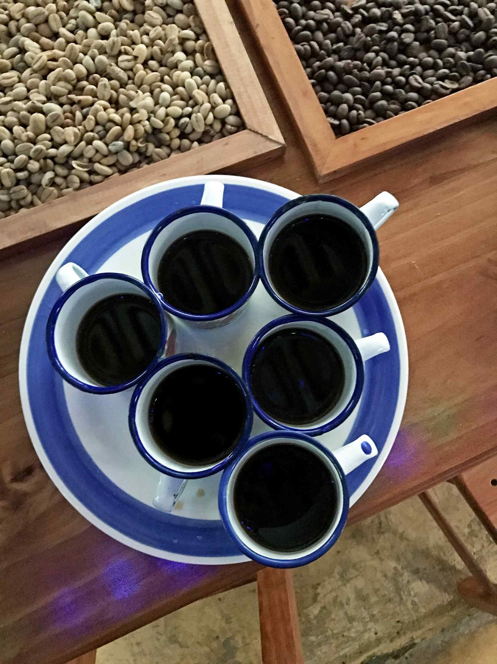Tasting Coffee in Salento, Colombia