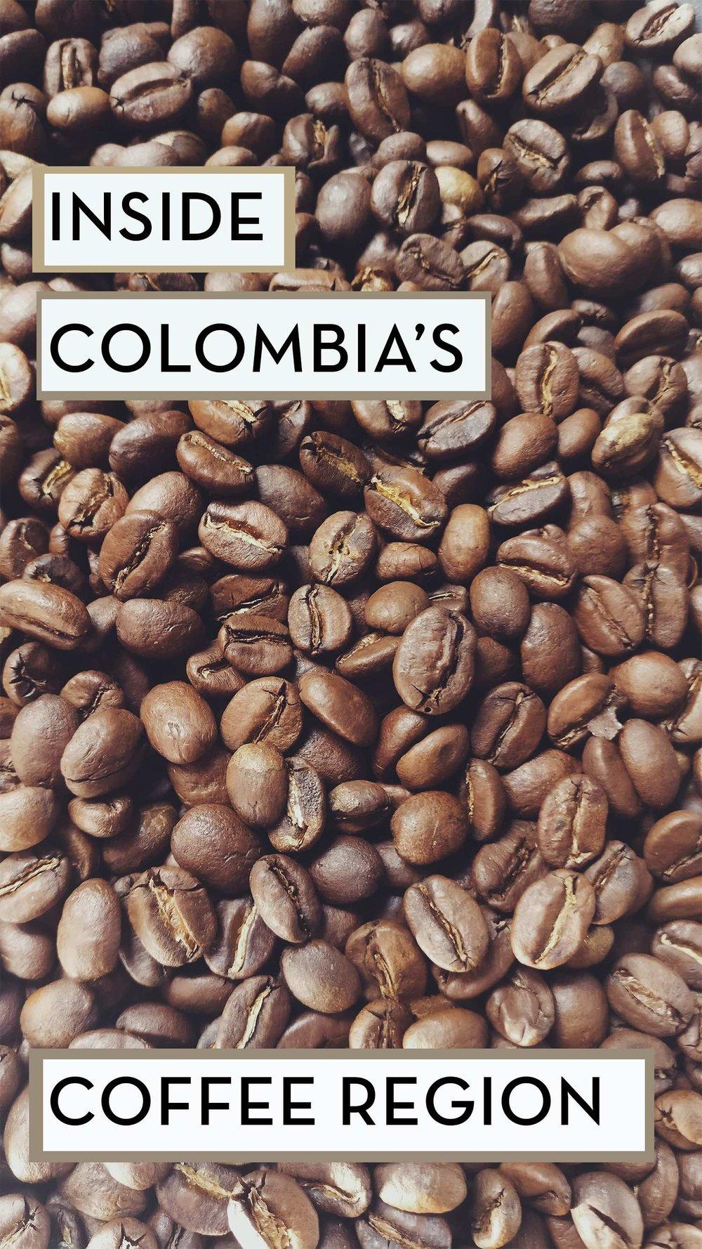 A Taste of Colombia's Rich Coffee Region