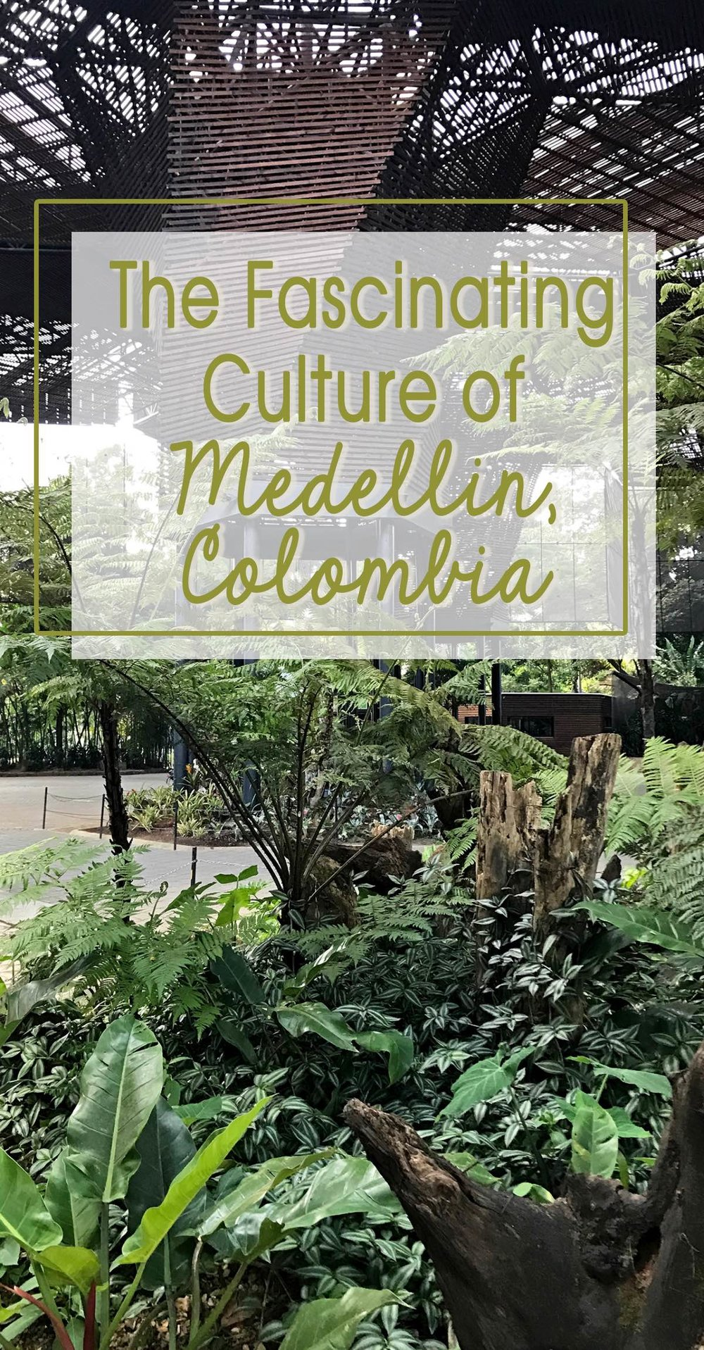 The Fascinating Culture of Medellin, Colombia