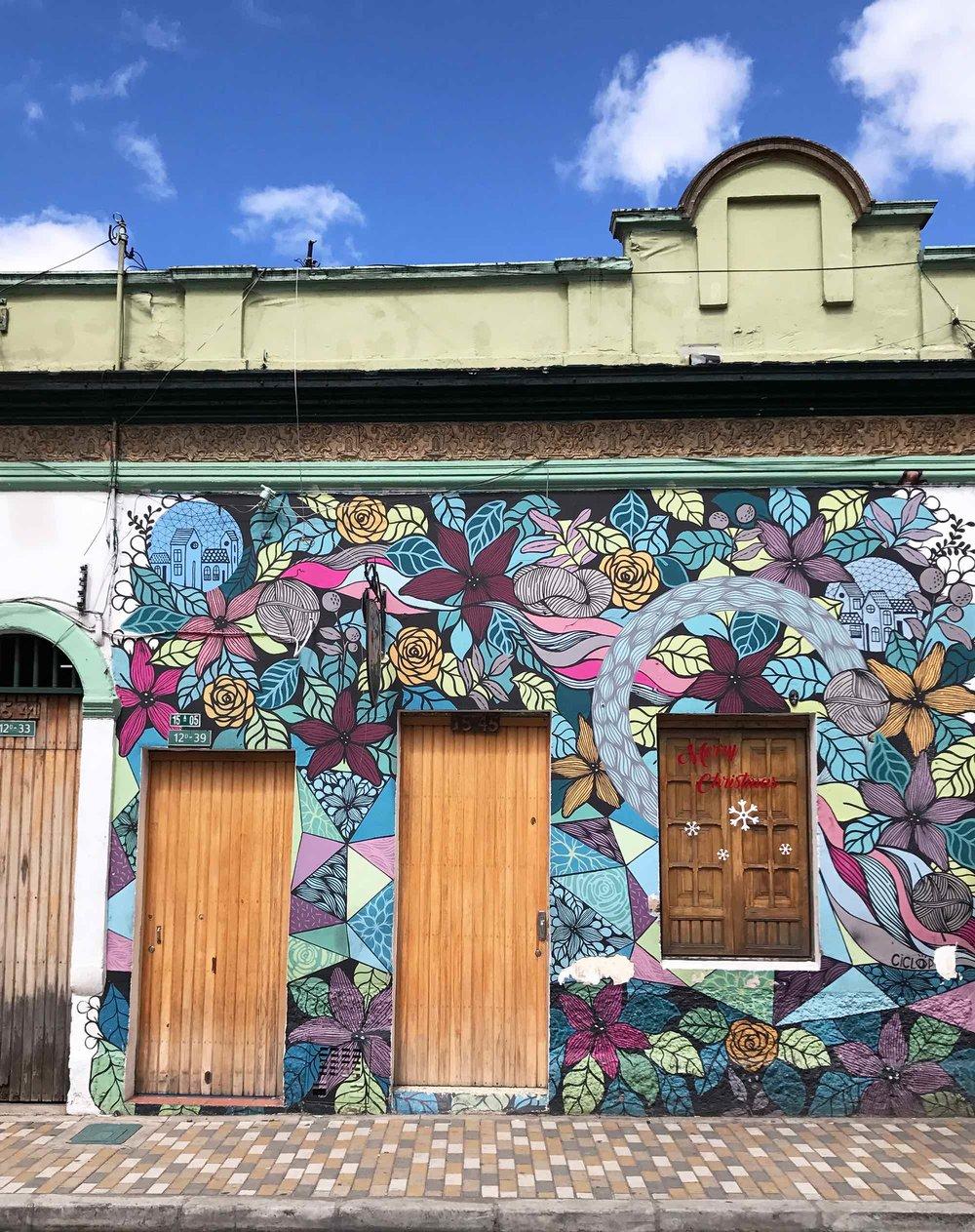 Bogota-street-art-florals-Colombia2.jpg