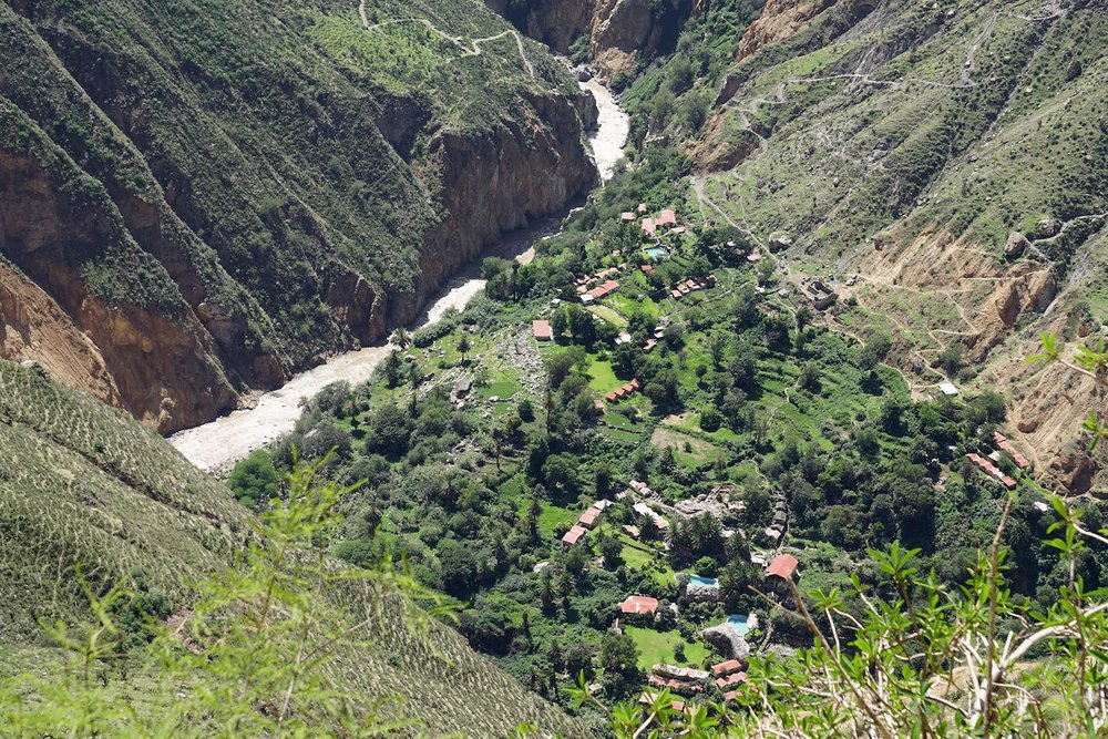 Colca Canyon Peru Sangalle oasis