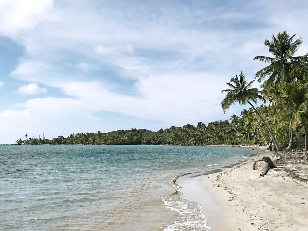 Starfish beach or Playa Estrella in Bocas del Toro, Panama