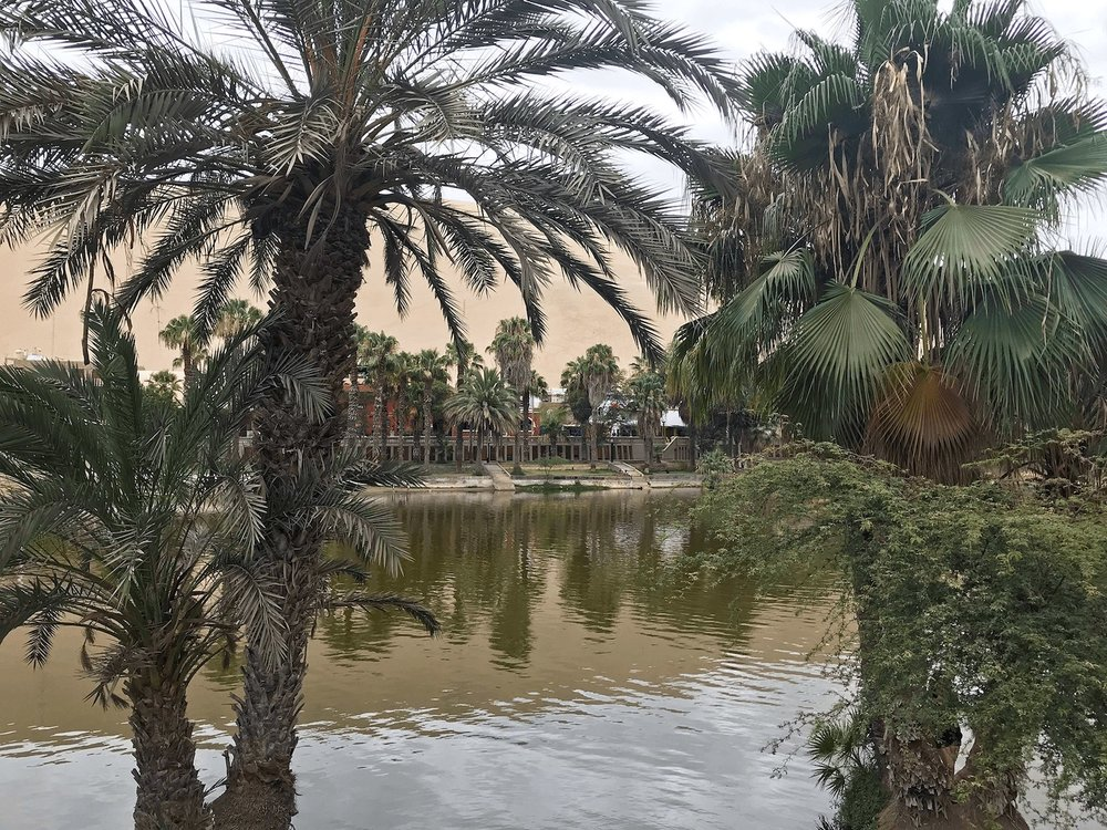 Huacachina Peru oasis lake trees