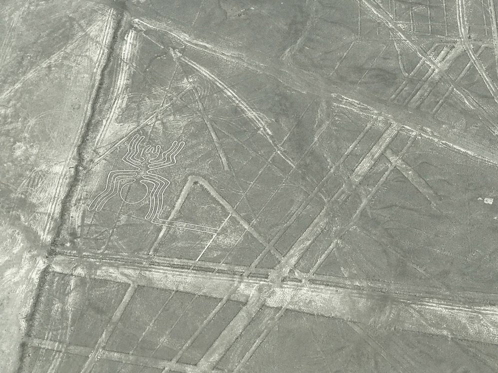 Nazca Lines | Ancient drawing of a spider in Peru