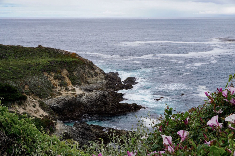 Big Sur | Rugged Coastline and Pacific Ocean in California