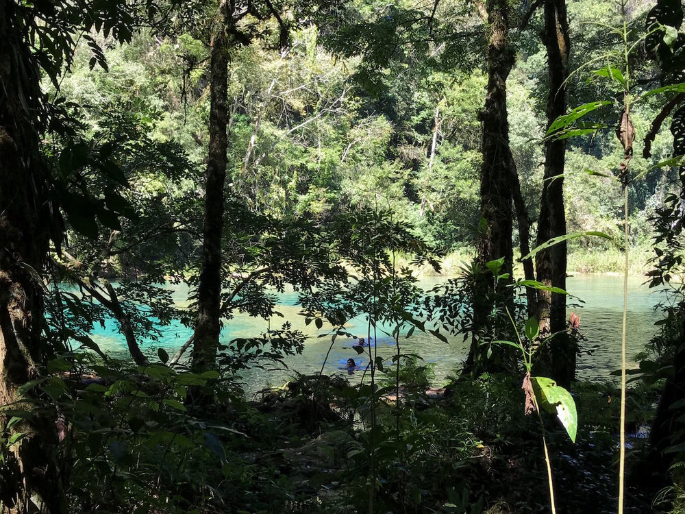 Semuc Champey Guatemala water through trees