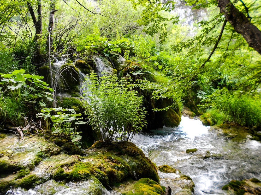 small waterfall in Plitvice Lakes National Park Croatia